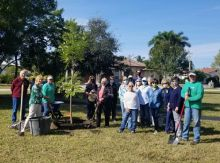 FLORIDA ARBOR DAY AT LEIGH PLUMMER PARK MARCO ISLAND